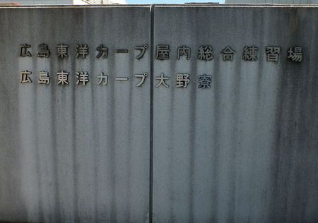 DSCF2007_08_21_2013.JPG